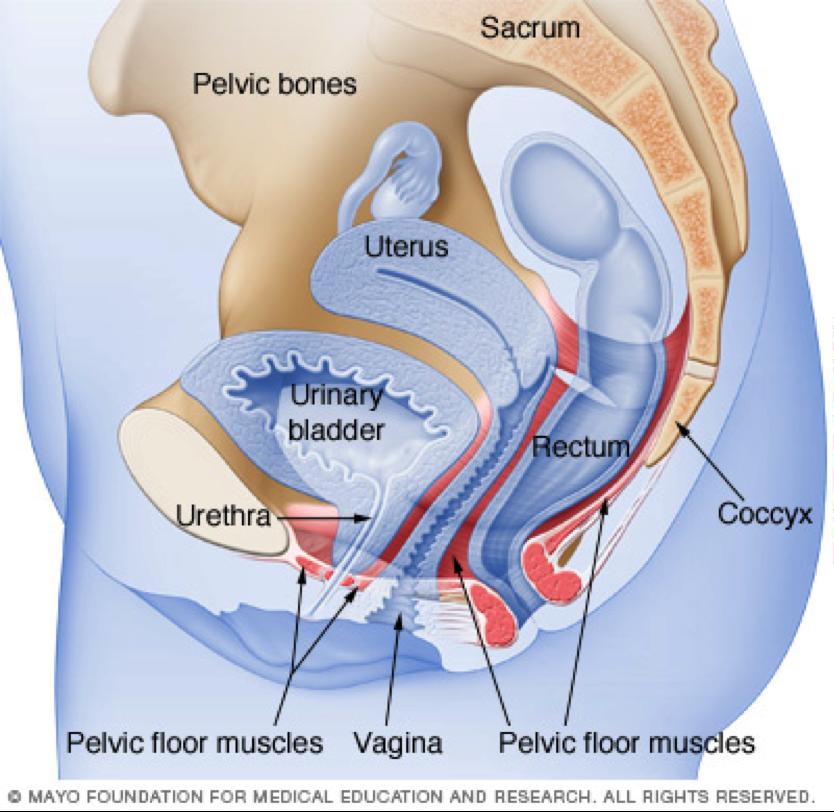 medical-pic2